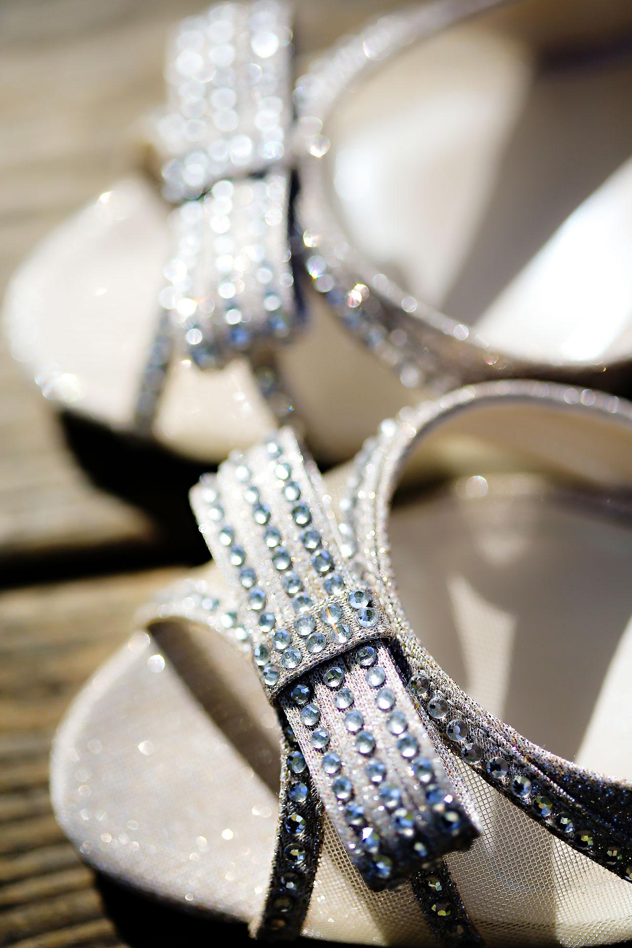 Lindsey Dave Ritz Charles Wedding 014