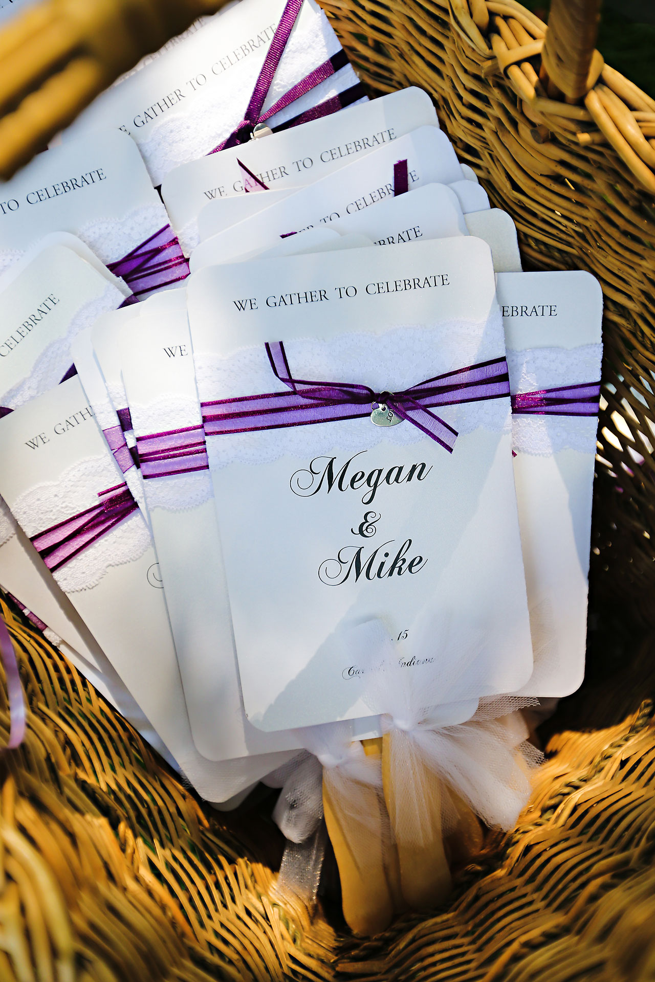 Megan Mike Sheraton Indianapolis Wedding 041