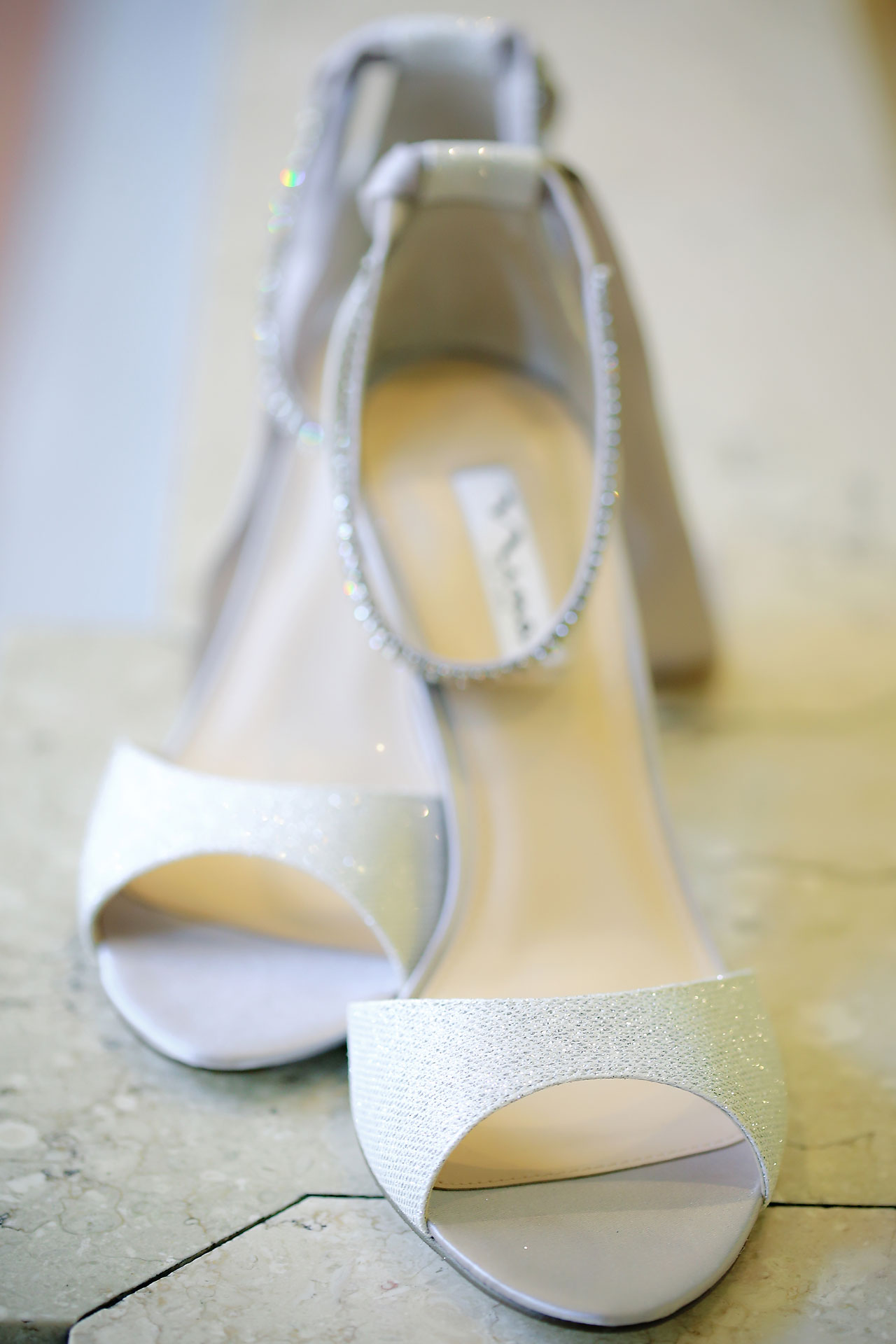 Alli Brett Indianapolis DAmore Wedding 016