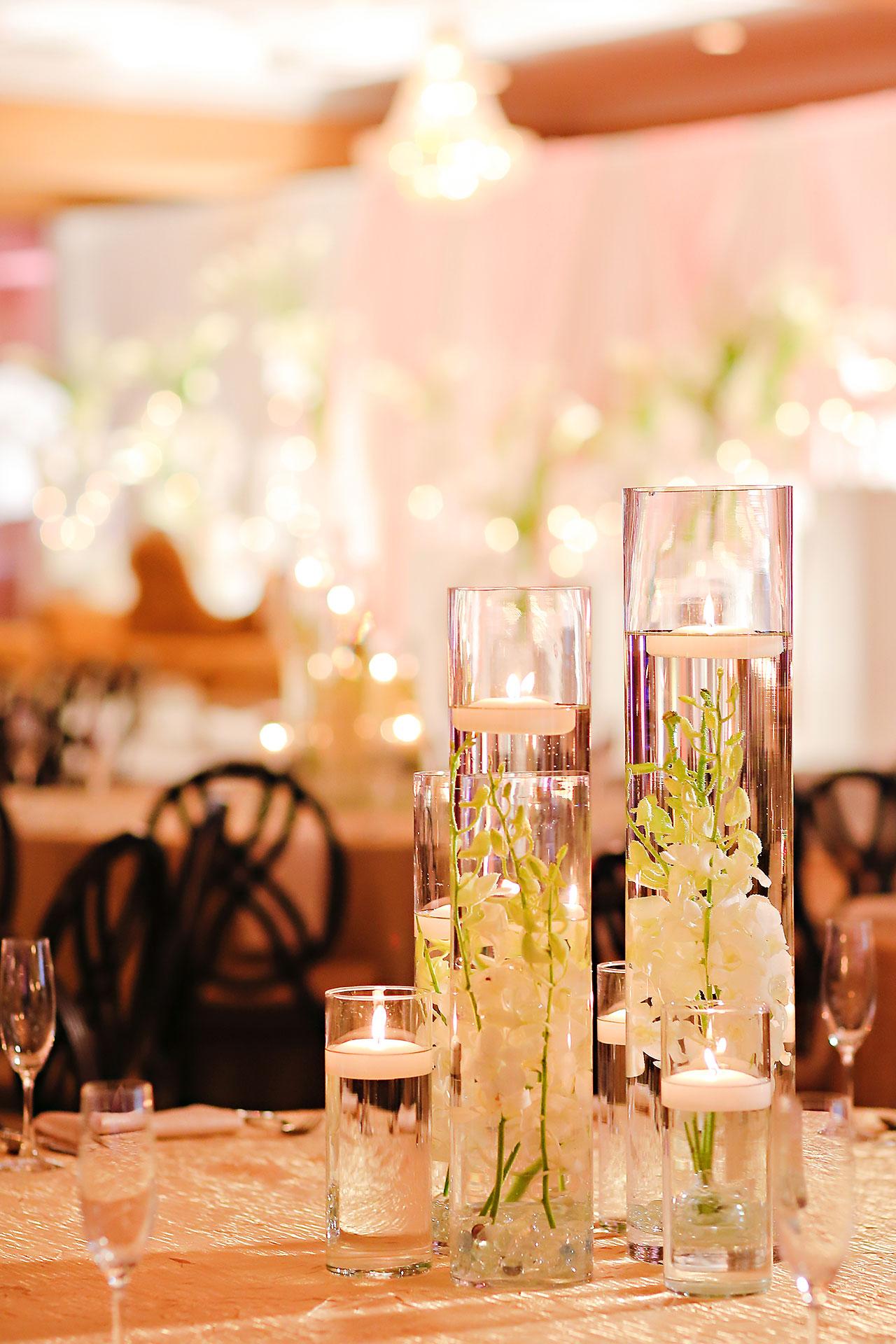 Anu Paras Indianapolis Indian Wedding Reception 030