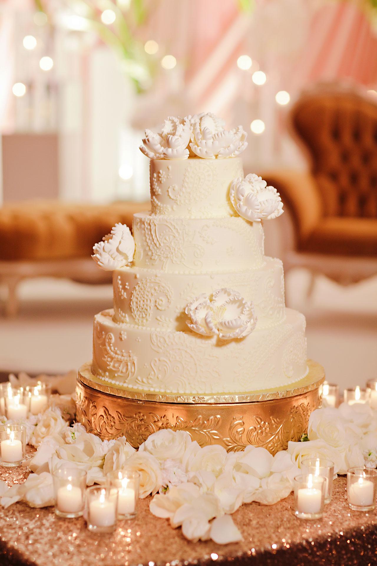 Anu Paras Indianapolis Indian Wedding Reception 017