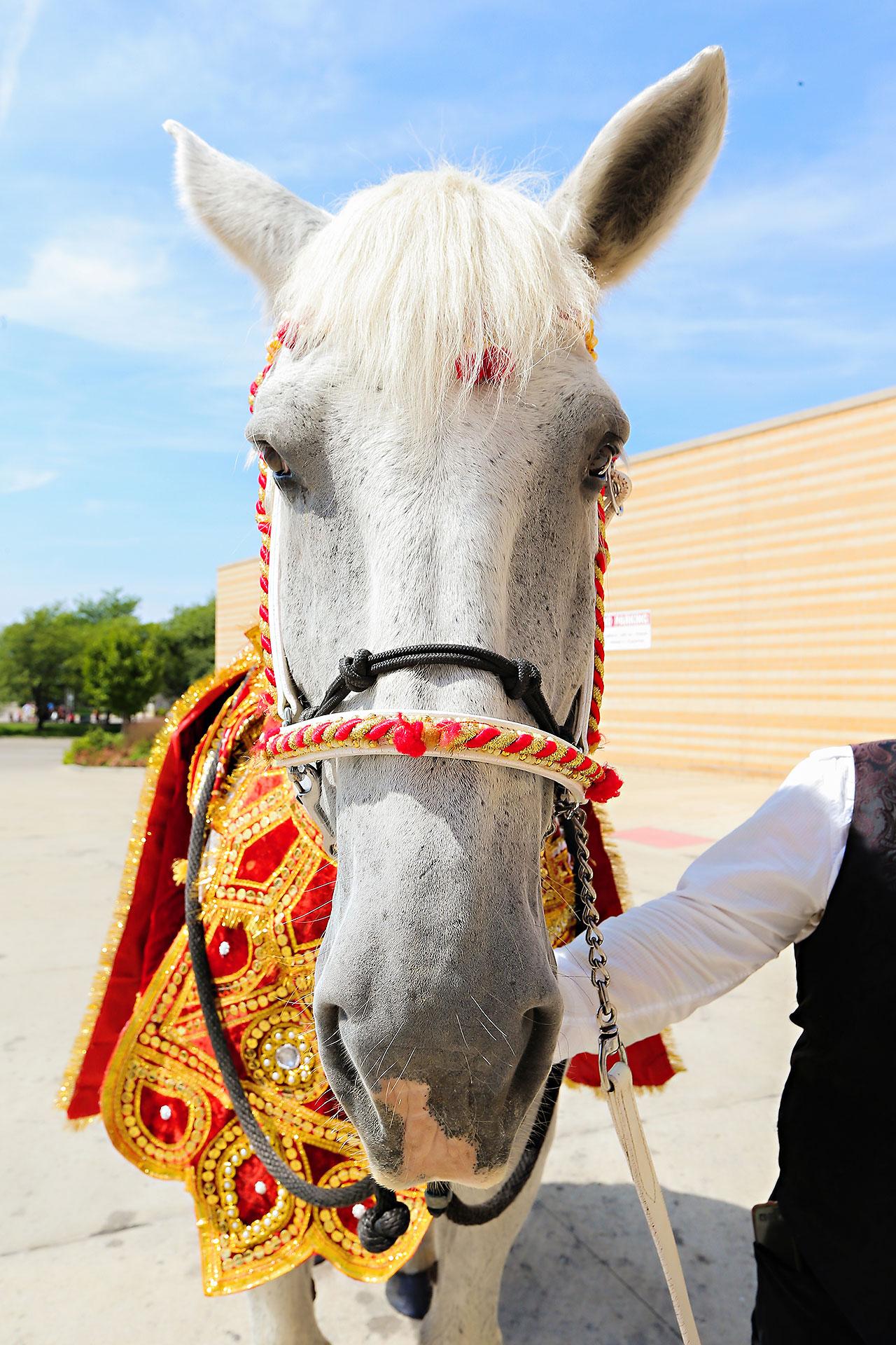Rojita Chris Indianapolis Indian Wedding 125