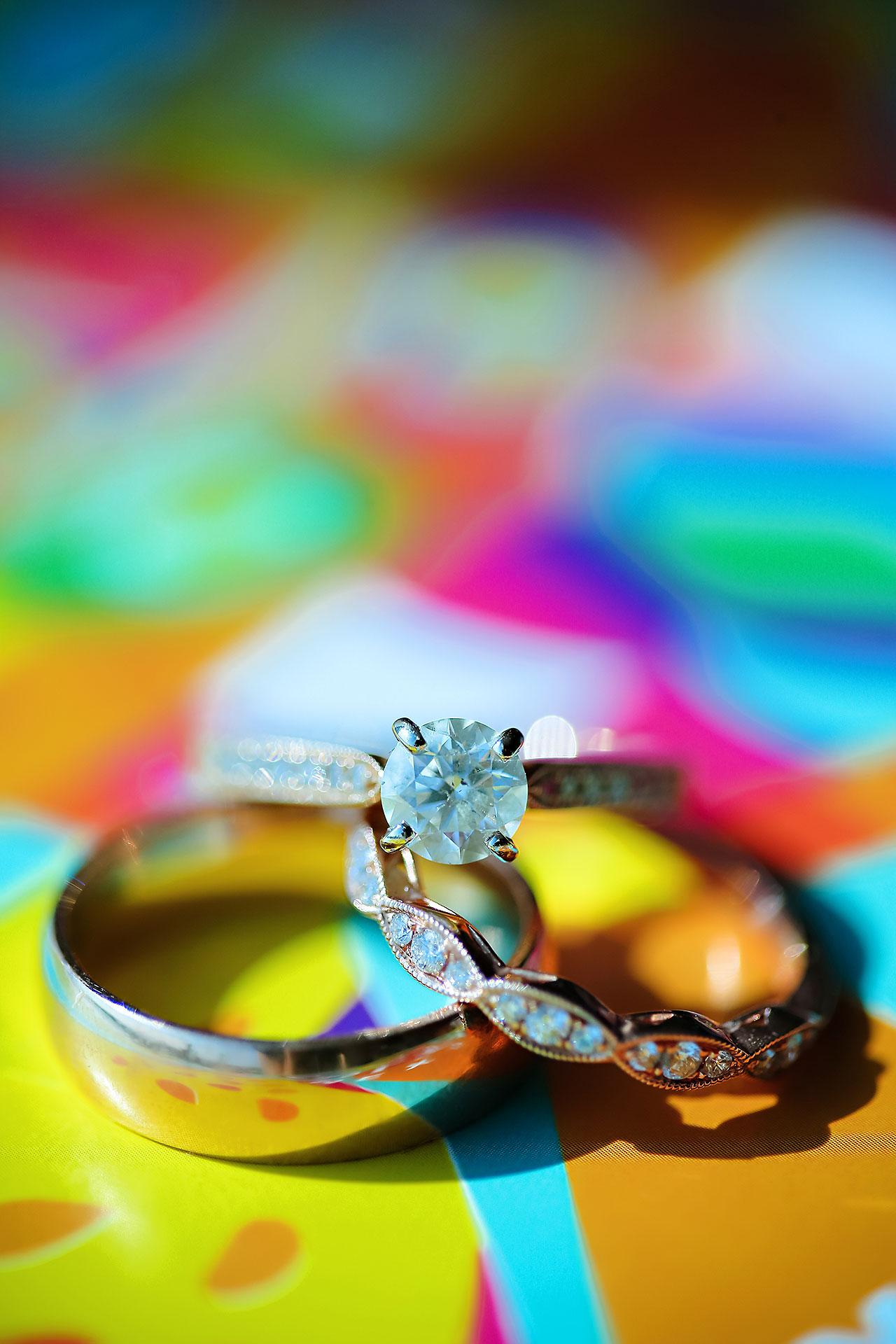 Rojita Chris Indianapolis Indian Wedding 020