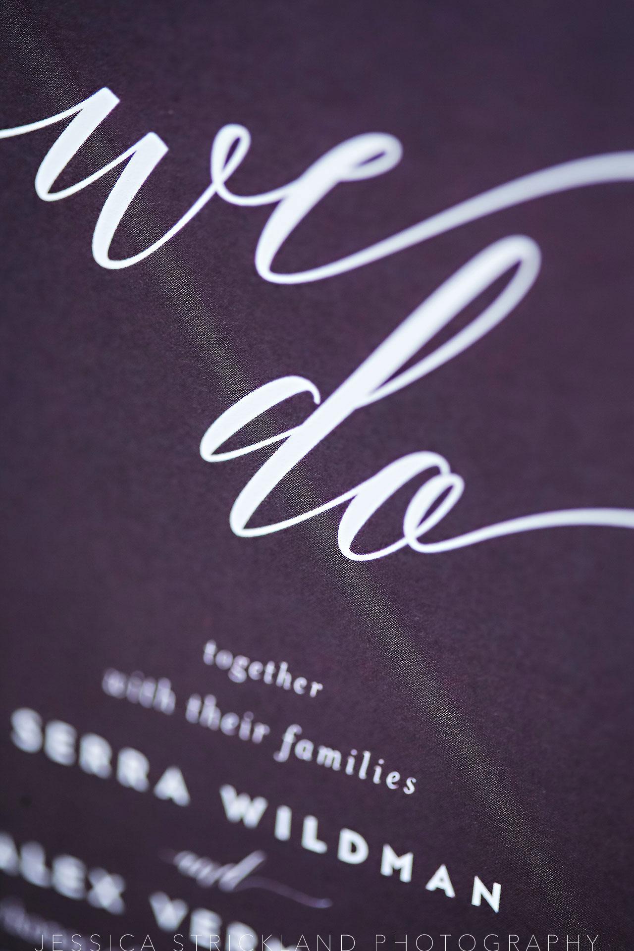 Serra Alex Regions Tower Indianapolis Wedding 019 watermarked