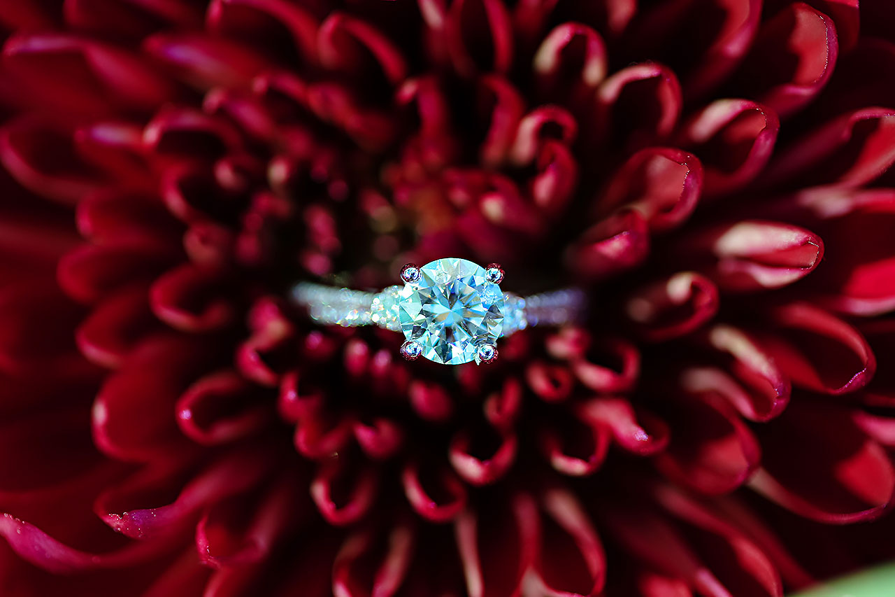 Jen Chris Ritz Charles Garden Pavilion Wedding 013