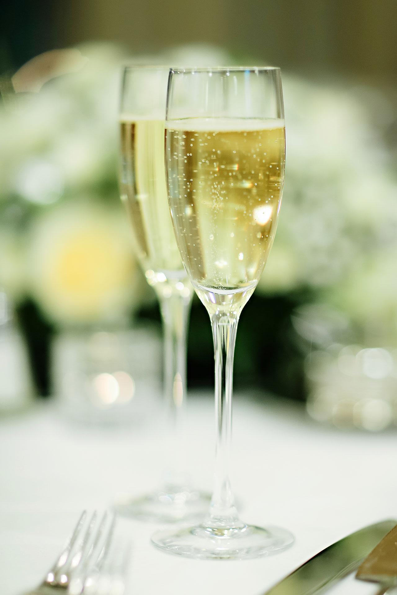 Rhonda Jeff Montage Indianapolis Wedding Reception 010