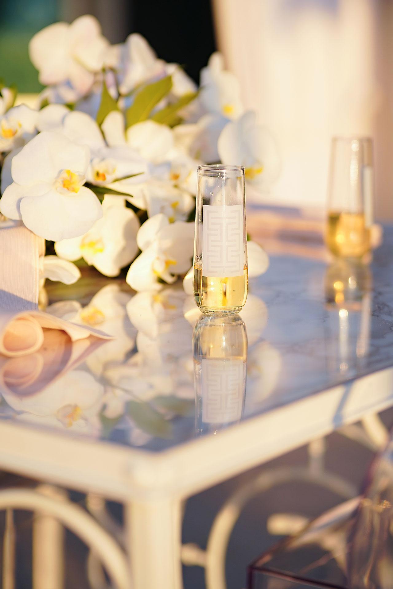 Michelle Al Wedding Reception 0166