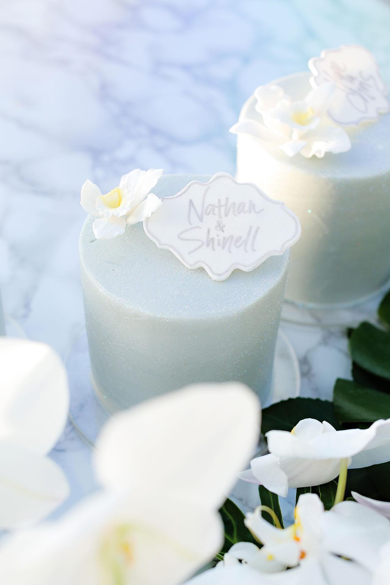 Michelle Al Wedding Reception 0124