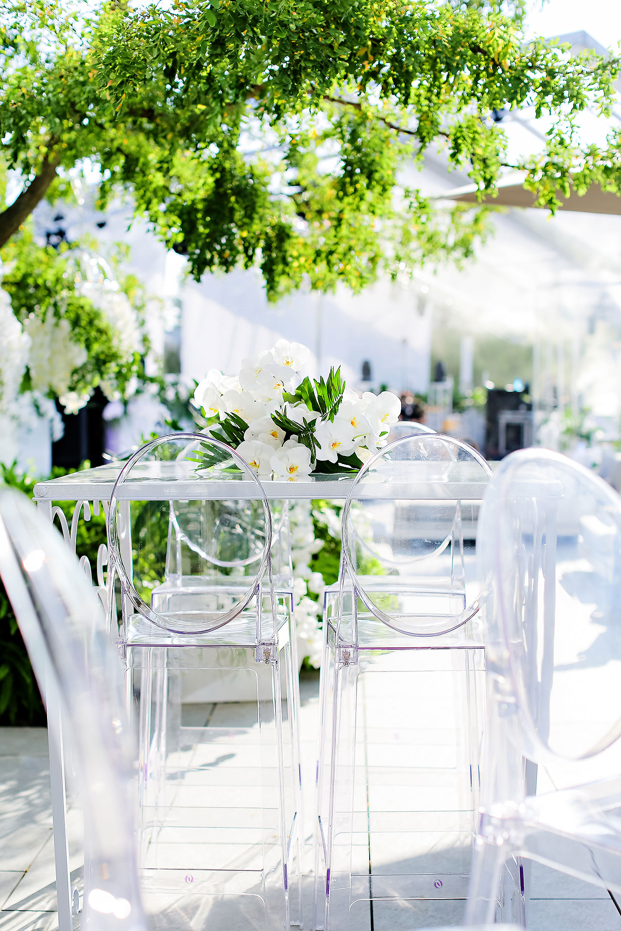 Michelle Al Wedding Reception 0110