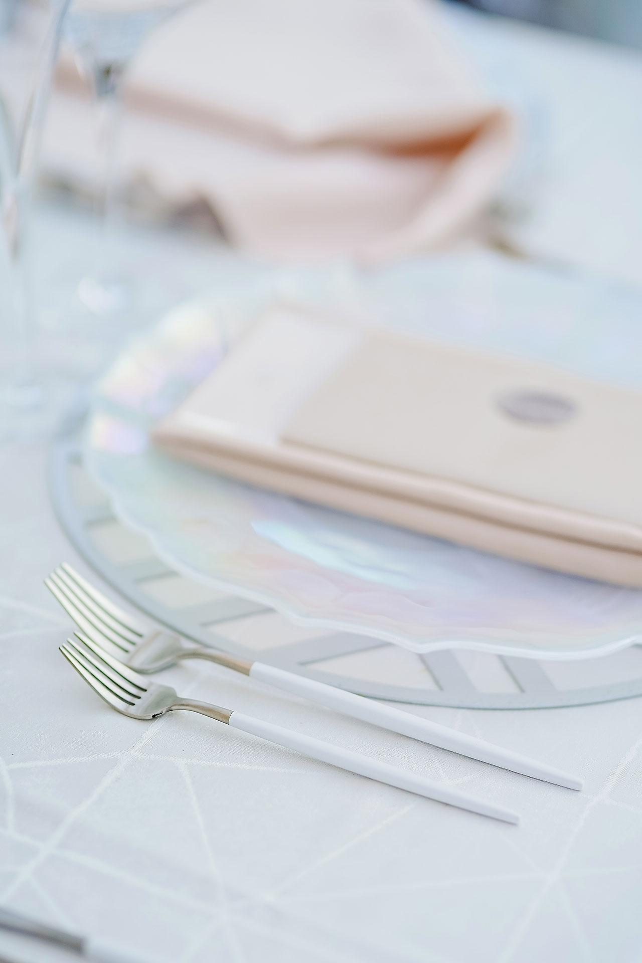 Michelle Al Wedding Reception 0034