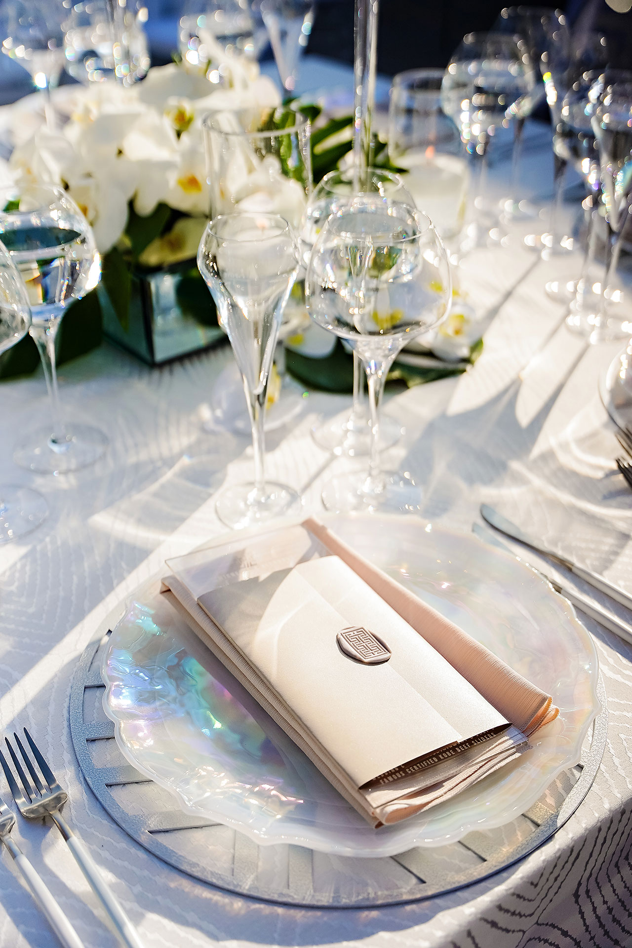 Michelle Al Wedding Reception 0029