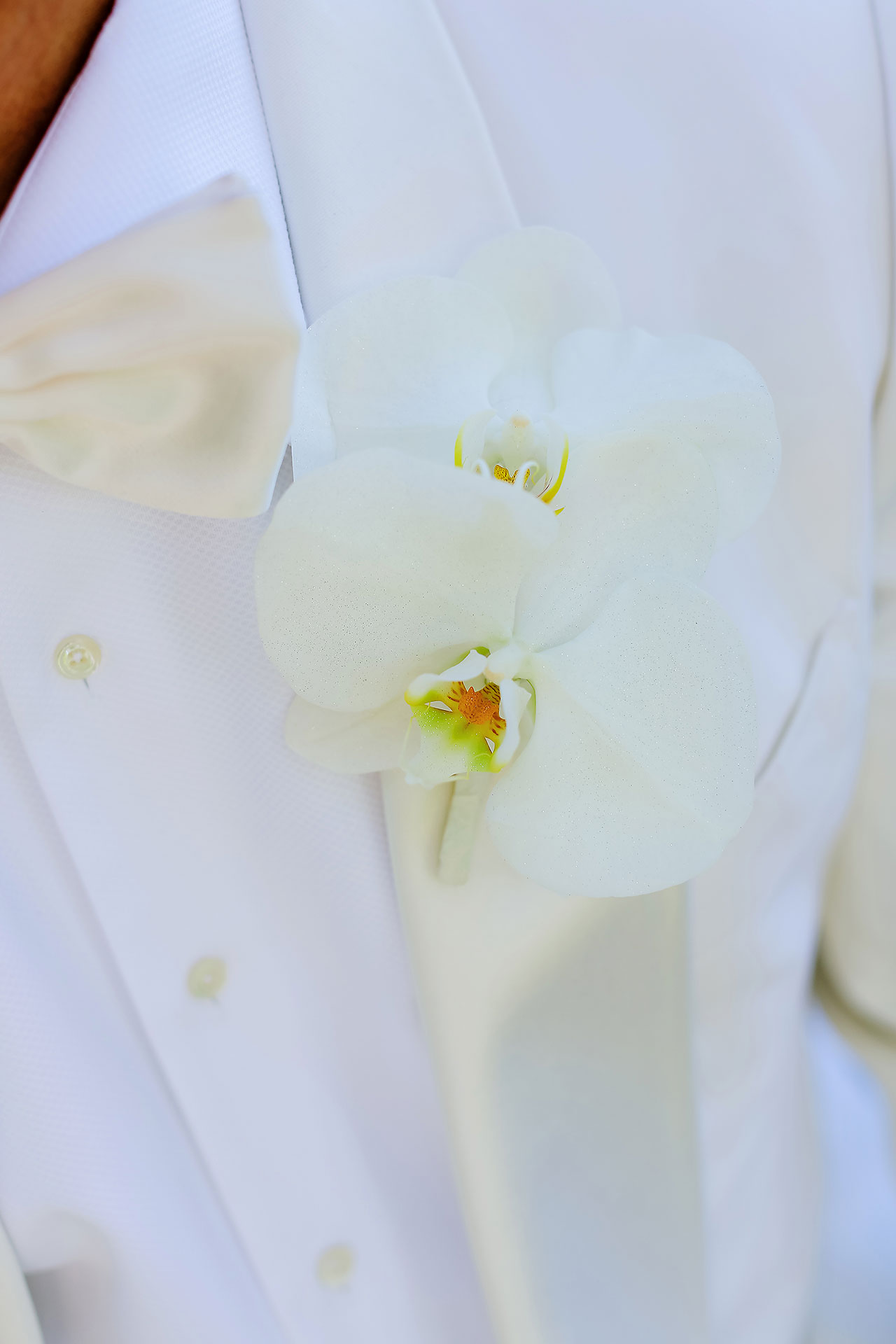 Michelle Al Wedding Ceremony 095