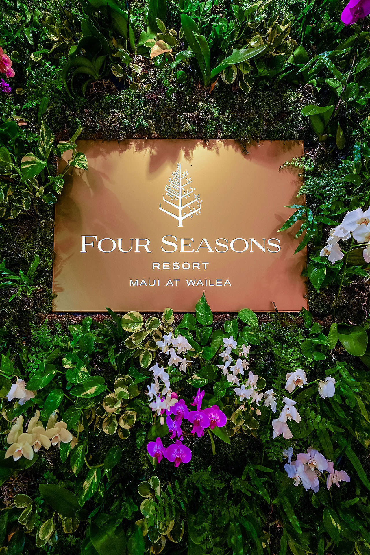 Kendra Pete Four Seasons Maui Welcome Party 095