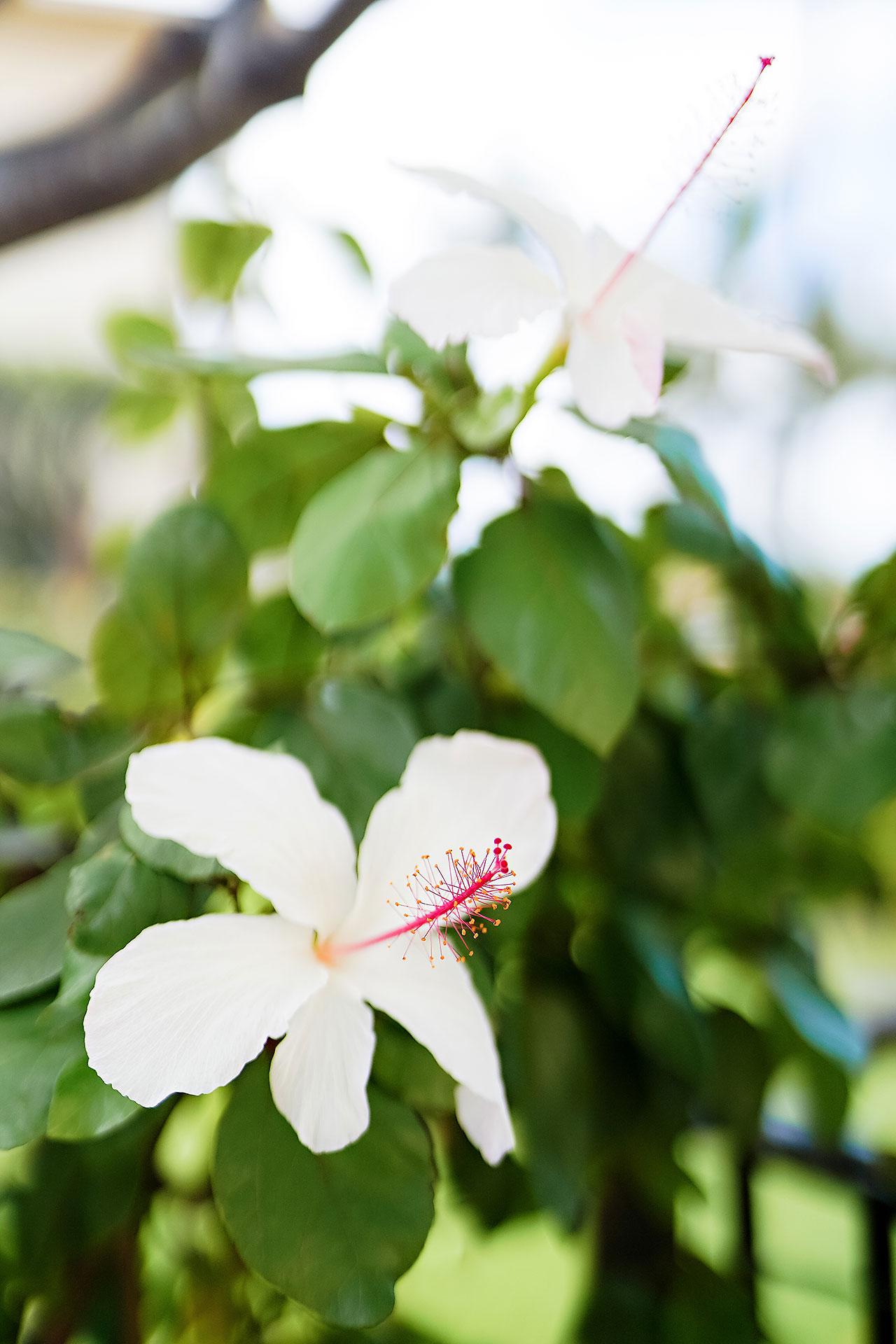 Kendra Pete Four Seasons Maui Wedding 007