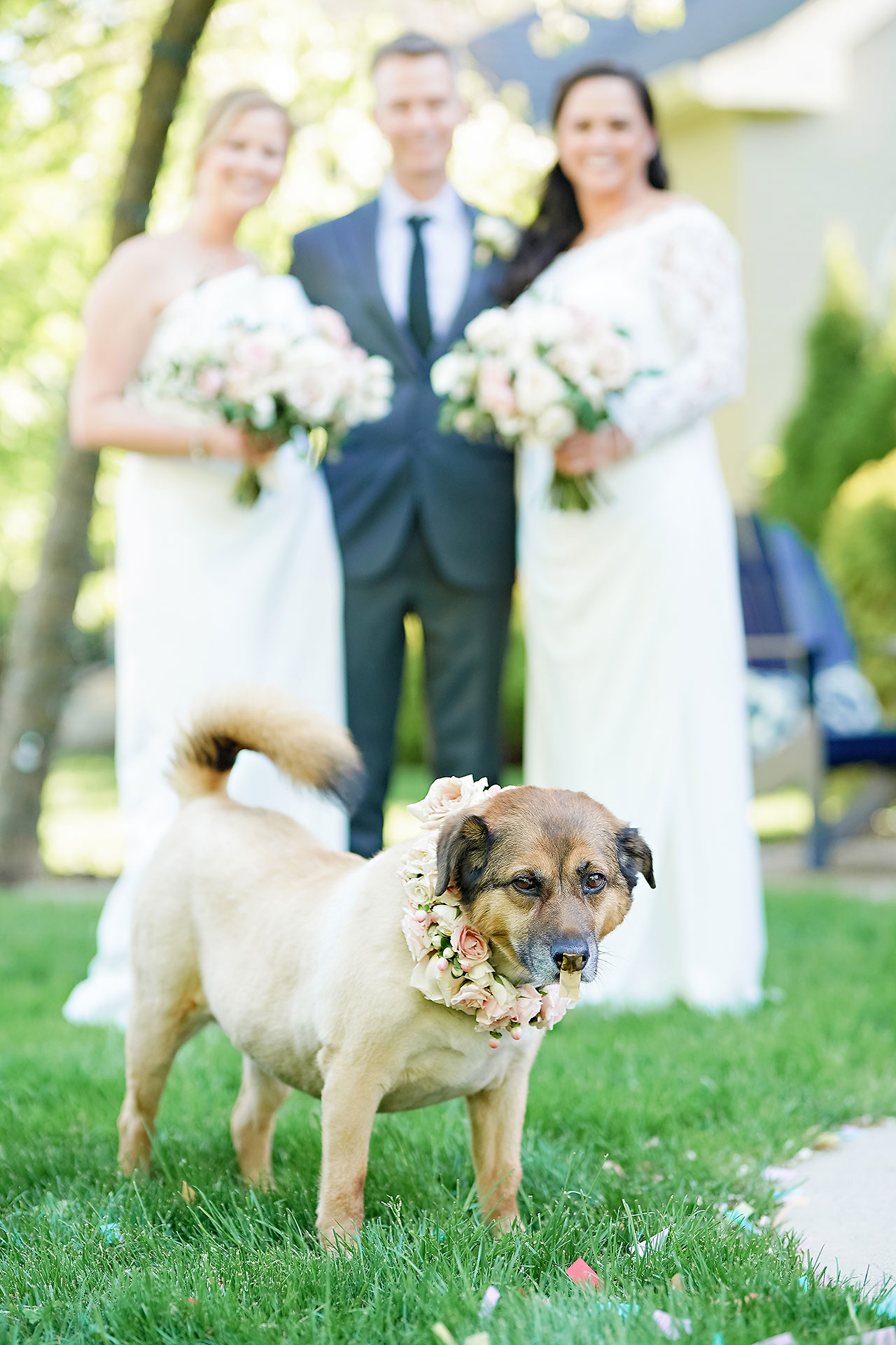 Gena Cameron Indianapolis Indiana Wedding 218
