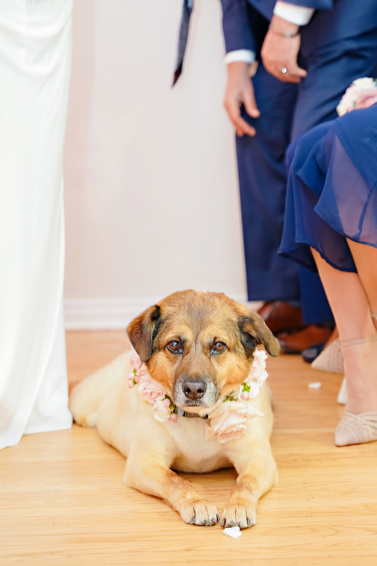 Gena Cameron Indianapolis Indiana Wedding 204