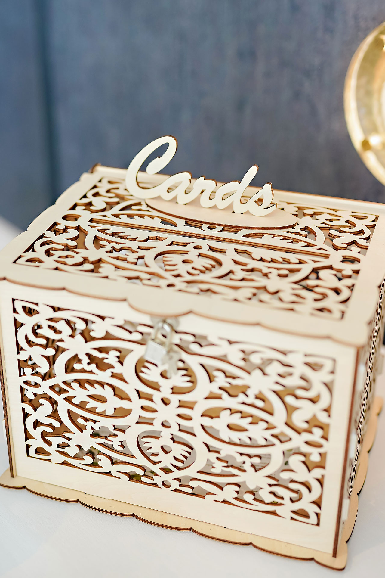 Brylie Jackson Ritz Charles Carmel Indiana Wedding Reception 012